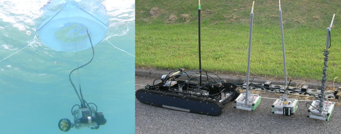 Robot Sensor Network